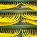 Cabeamento de rede